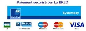 Bonjour et bienvenu dans notre e-boutique. Vous pouvez commander les produits en ligne, le paiement est sécurisé par la Bred .